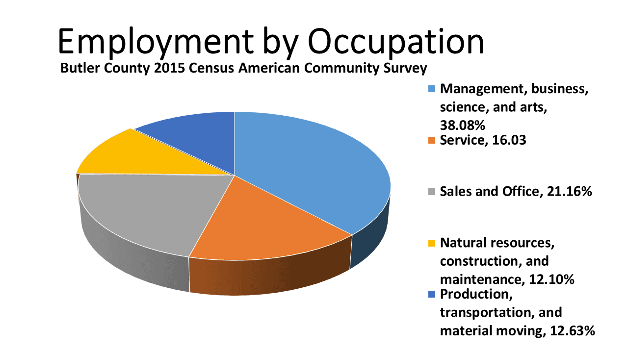 Employment by Occupation