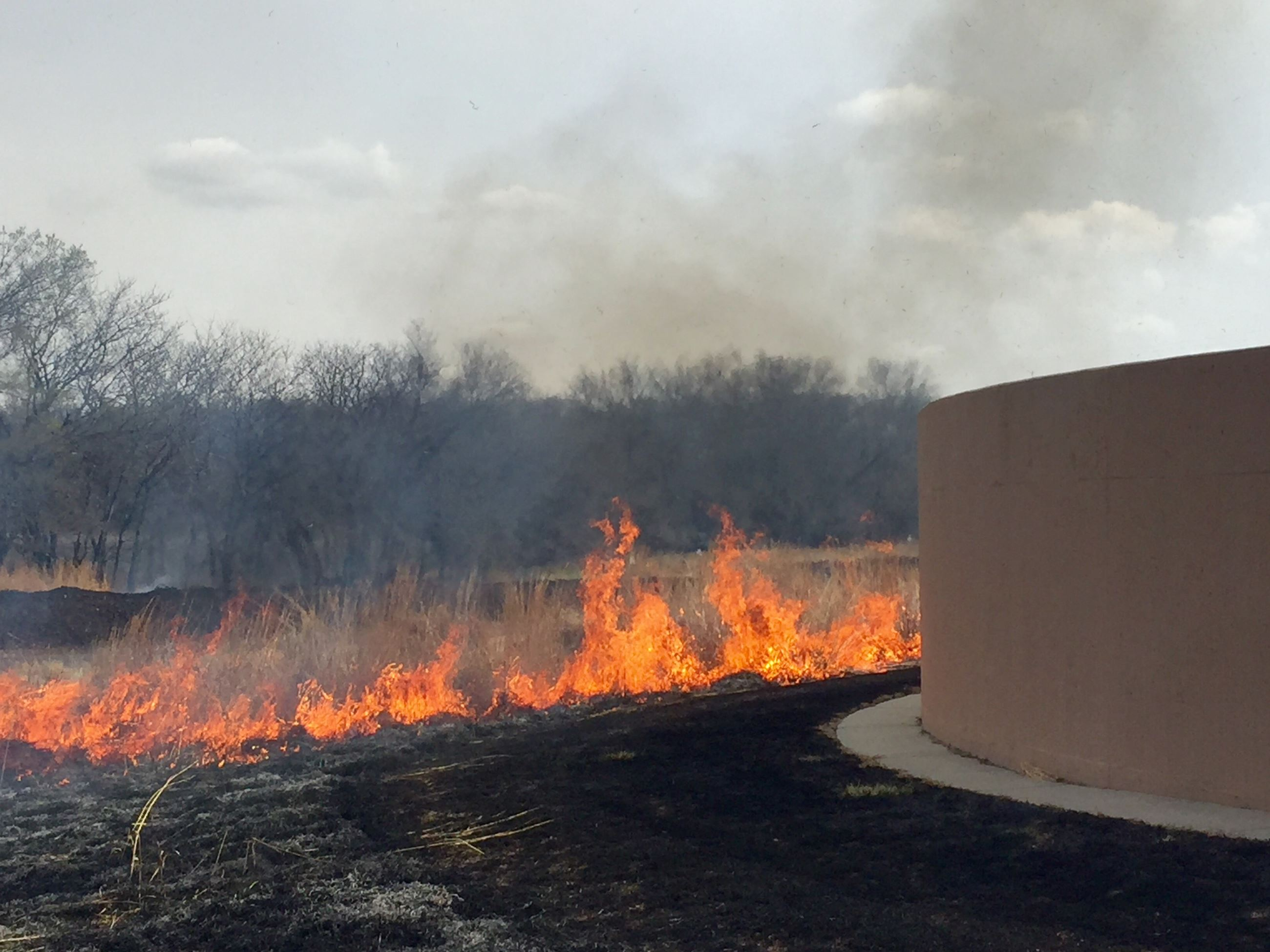 Grass being burned around the Water Reclamation Facility